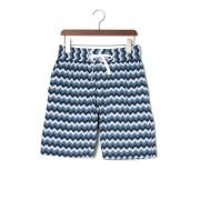【65%OFF】RATA ストレッチ ジグザグボーダー ハーフパンツ ブルー 2 ファッション > メンズウエア~~パンツ