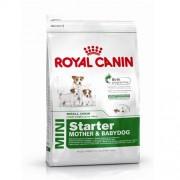 ROYAL CANIN MINI STARTER M&B 8,5kg