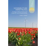 Sustainability and Energy Politics: The Promises of Ecological Modernisation and Corporate Social Responsibility