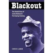 Blackout by Chris Lamb