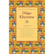 The Collected Works of Dilgo Khyentse: Volume Two by Dilgo Khyentse