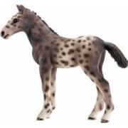 Figurina Schleich Knabstrupper Foal