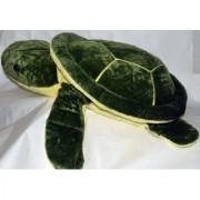 Mr. Turtle (Size 5)