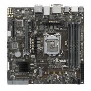 P10S-M WS Carte mre Micro-ATX Socket 1151 Intel C236 - SATA 6Gb/s - M.2 - 1x PCI Express 3.0 16x