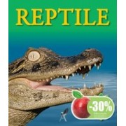 Reptile. aquila