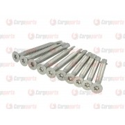 Galvanized screws