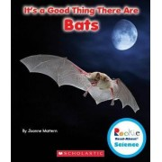 It's a Good Thing There Are Bats by Joanne Mattern
