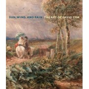Sun, Wind, and Rain by Scott Wilcox