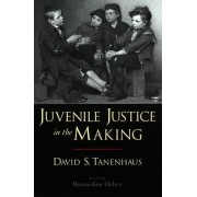 Juvenile Justice in the Making by David S. Tanenhaus