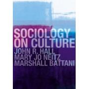 Sociology on Culture by John R. Hall