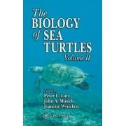 The Biology of Sea Turtles: v. 2 by Jeanette Wyneken