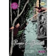 Romeo and Juliet the Graphic Novel: Plain Text by John McDonald