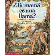 Tu Mama Es Una Llama? (Is Your Mama a Llama?) by Deborah Guarino