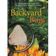 Backyard Bugs: An Identification Guide to Common Insects, Spiders, and More, Paperback