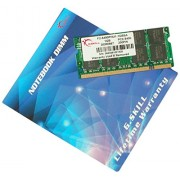 G.Skill 1GB (1x1024MB) PC2-5300 1GB DDR2 667MHz memoria