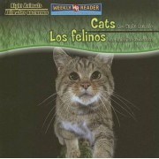 Cats Are Night Animals/Los Felinos Son Animales Nocturnos by Joanne Mattern