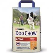 Dog Chow Adult cu Pui 14kg