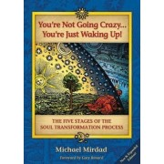 You're Not Going Crazy...You're Just Waking Up! by Dr. Michael Mirdad