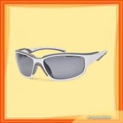 Arctica S-179 C Sunglasses