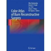 Color Atlas of Burn Reconstructive Surgery by Hiko Hyakusoku