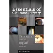 Essentials of Glaucoma Surgery by Malik Y. Kahook