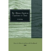 The African American Experience in Texas by James M. Smallwood
