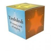 Jewish Charity Donation Boxes, Tzedakah Box. Pkg Of 50