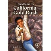 David Joins the California Gold Rush by Linda Sibley