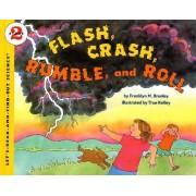 Flash, Crash, Rumble and Roll by Franklyn M. Branley