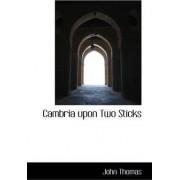 Cambria Upon Two Sticks by John Thomas