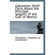 Galveston by Galveston Chamber of Commerce