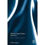 Whole Energy System Dynamics: Theory, Modelling and Policy