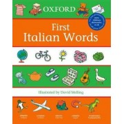 First Italian Words by David Melling