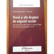 Pensii Si Alte Drepturi De Asigurari Sociale - Silvia Georgiana Ignat Lucia Uta