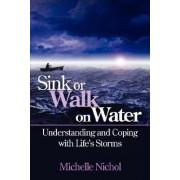 Sink or Walk on Water by Michelle Nichol
