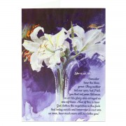 How much more will he clothe you! - Luke 12:27, 28 - (Scriptural Greeting Card)