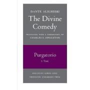 The Divine Comedy, II. Purgatorio, Vol. II. Part 2: Commentary by Dante