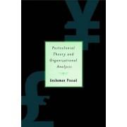 Postcolonial Theory and Organizational Analysis by Anshuman Prasad