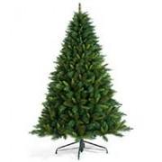 Jelka Rockwood Pine 270 cm 2D i 3D iglice