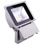 Proiector LED 70W Alb Rece 220V