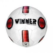 Minge fotbal Winner Typhon Sala