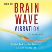Music for Brain Wave Vibration by Best Life Media