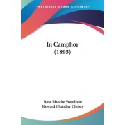 In Camphor (1895) by Rose Blanche Woodyear