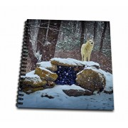 3dRose db_100273_1 Arctic Wolf Blue-Drawing Book, 8 by 8-Inch