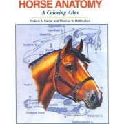 Horse Anatomy by Robert A. Kainer