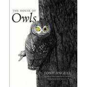 The House of Owls by Tony Angell