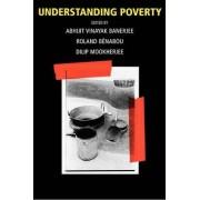 Understanding Poverty by Abhijit Vinayak Banerjee