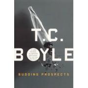 Budding Prospects by T. C Boyle