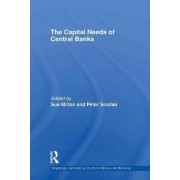 The Capital Needs of Central Banks by Mario Blejer