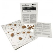 American Educational Products 568 Fossil Laboratory - 21 Fossils; Individual Set